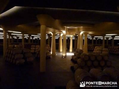 Enología en Rioja - Senderismo Camino de Santiago - Museo Cultura del Vino (Dinastia Vivanco);grupo